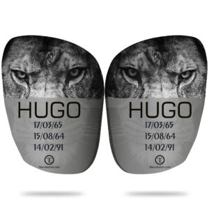 Hugo Tibevolution