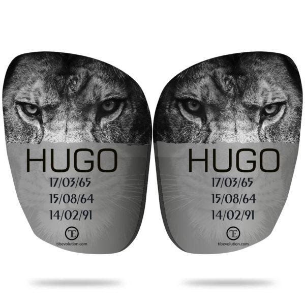 Hugo Tibevolution